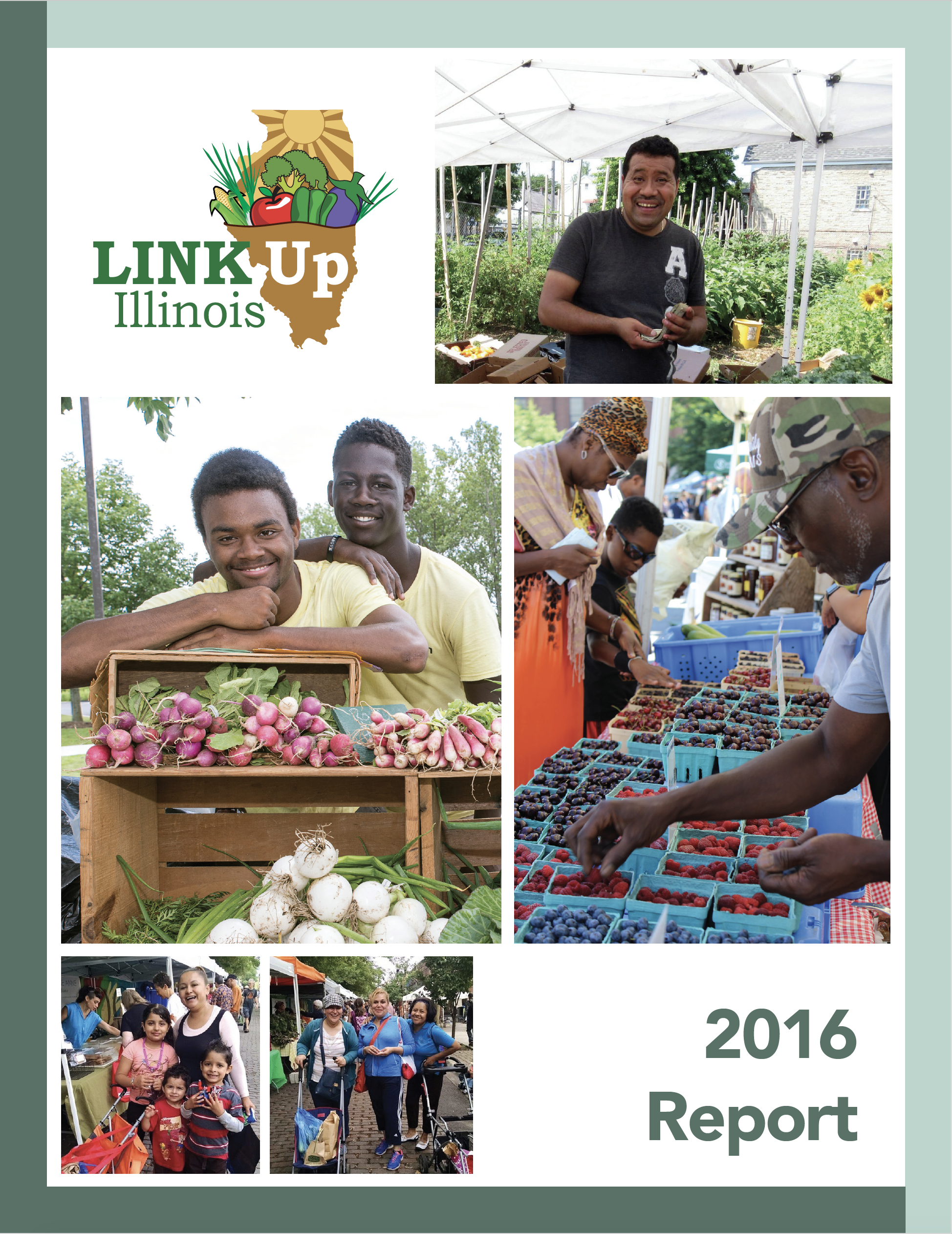 2016 Link Up Report.png
