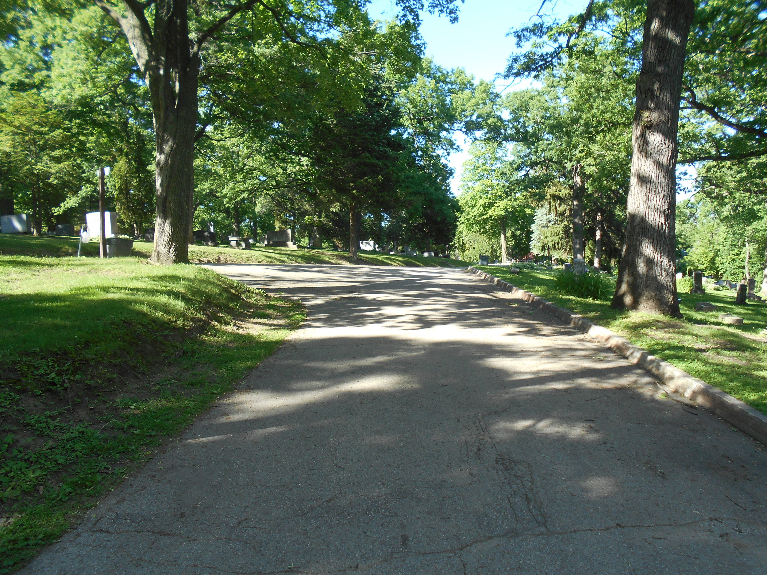 Forest Hill Cemetery with road in the middle
