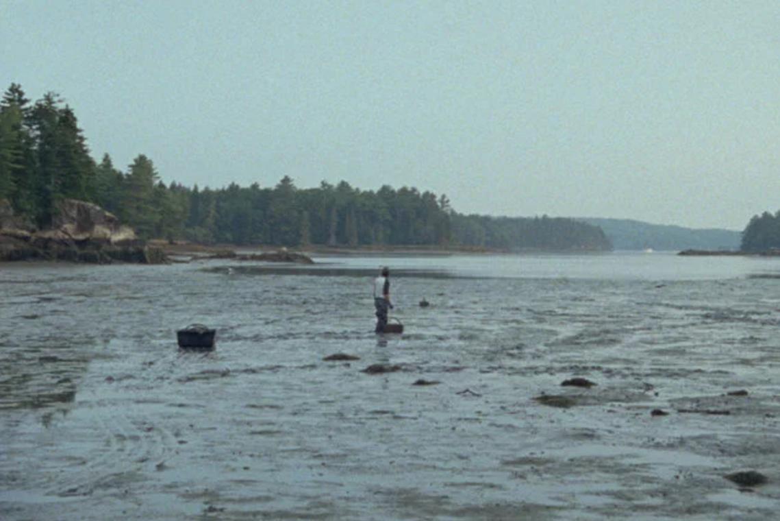Double Tide, 2009