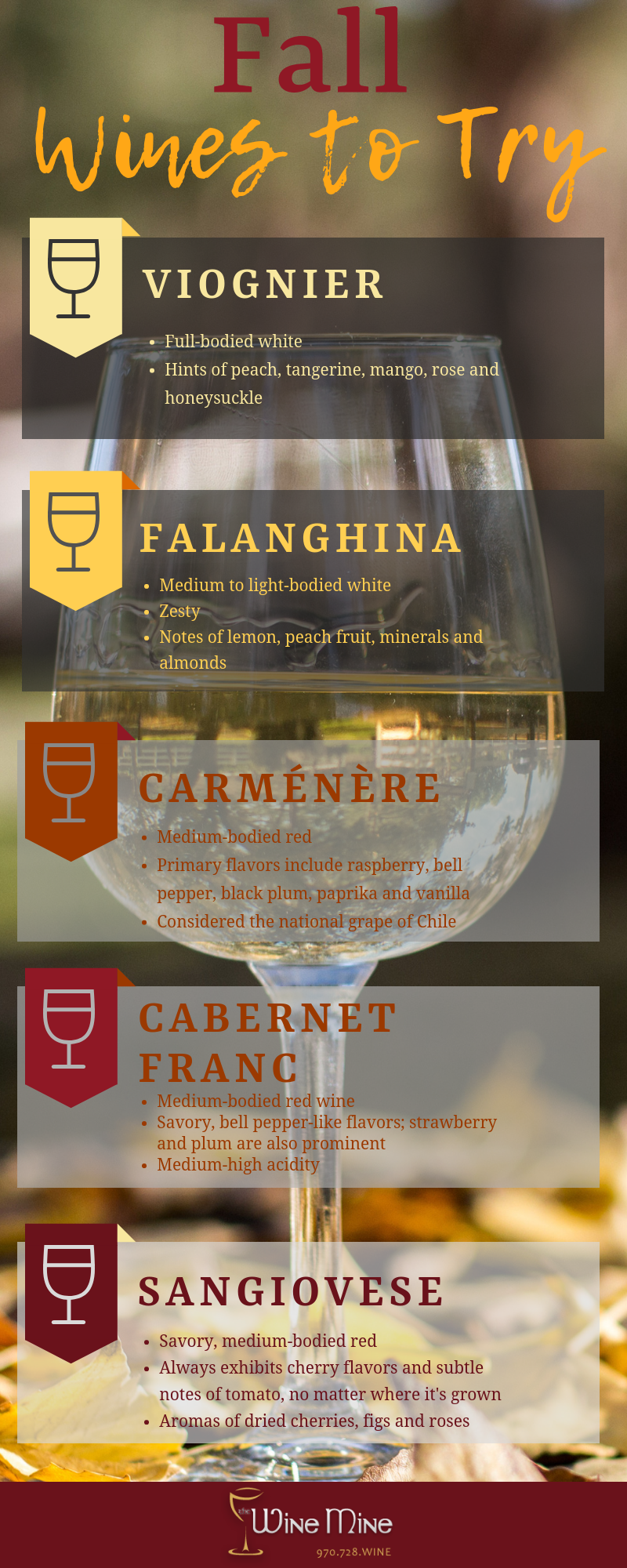 WineMine-fallwines-infographic.png