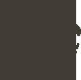 Camp Eagle logo.png