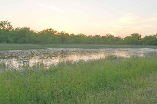 60km, 30km, 10km - Johnson City, TX