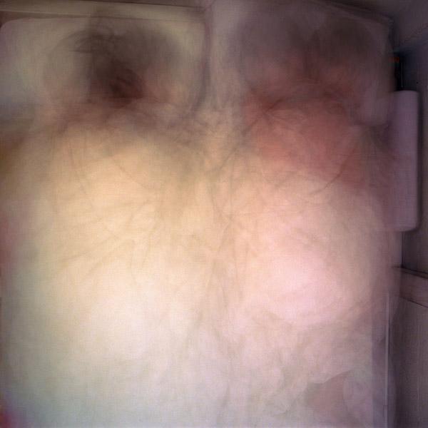 lavender10.jpg