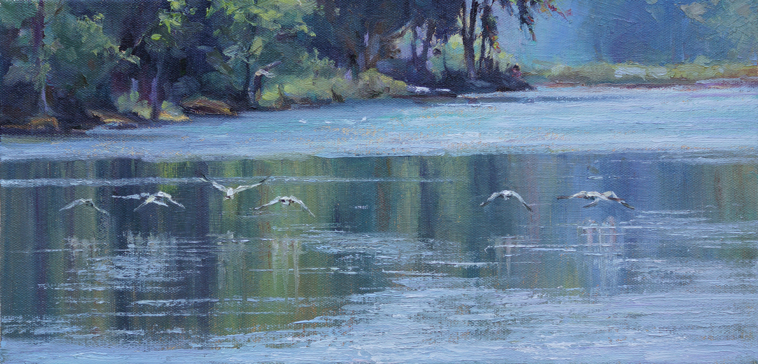 Geese Skim the River