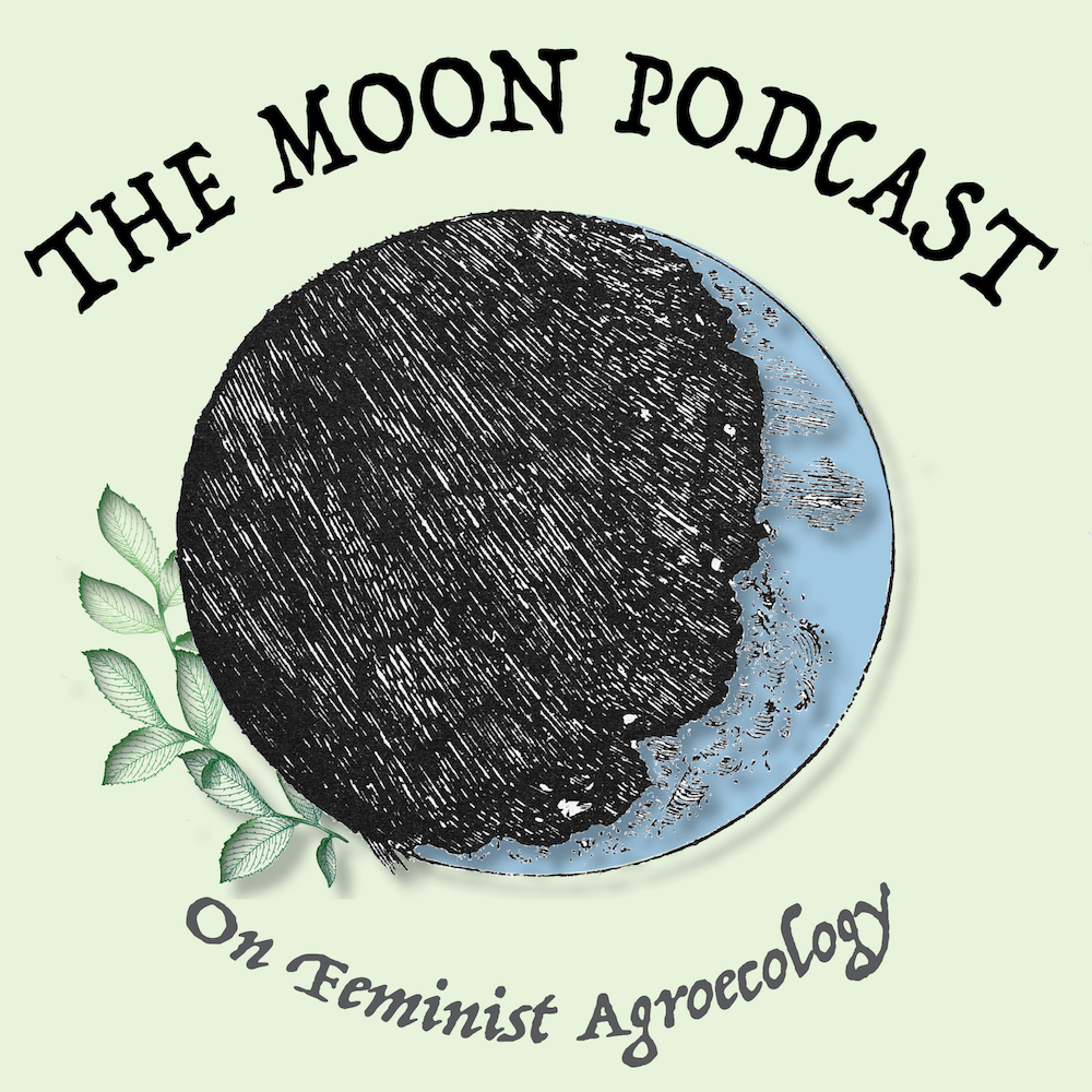 The Moon Podcast