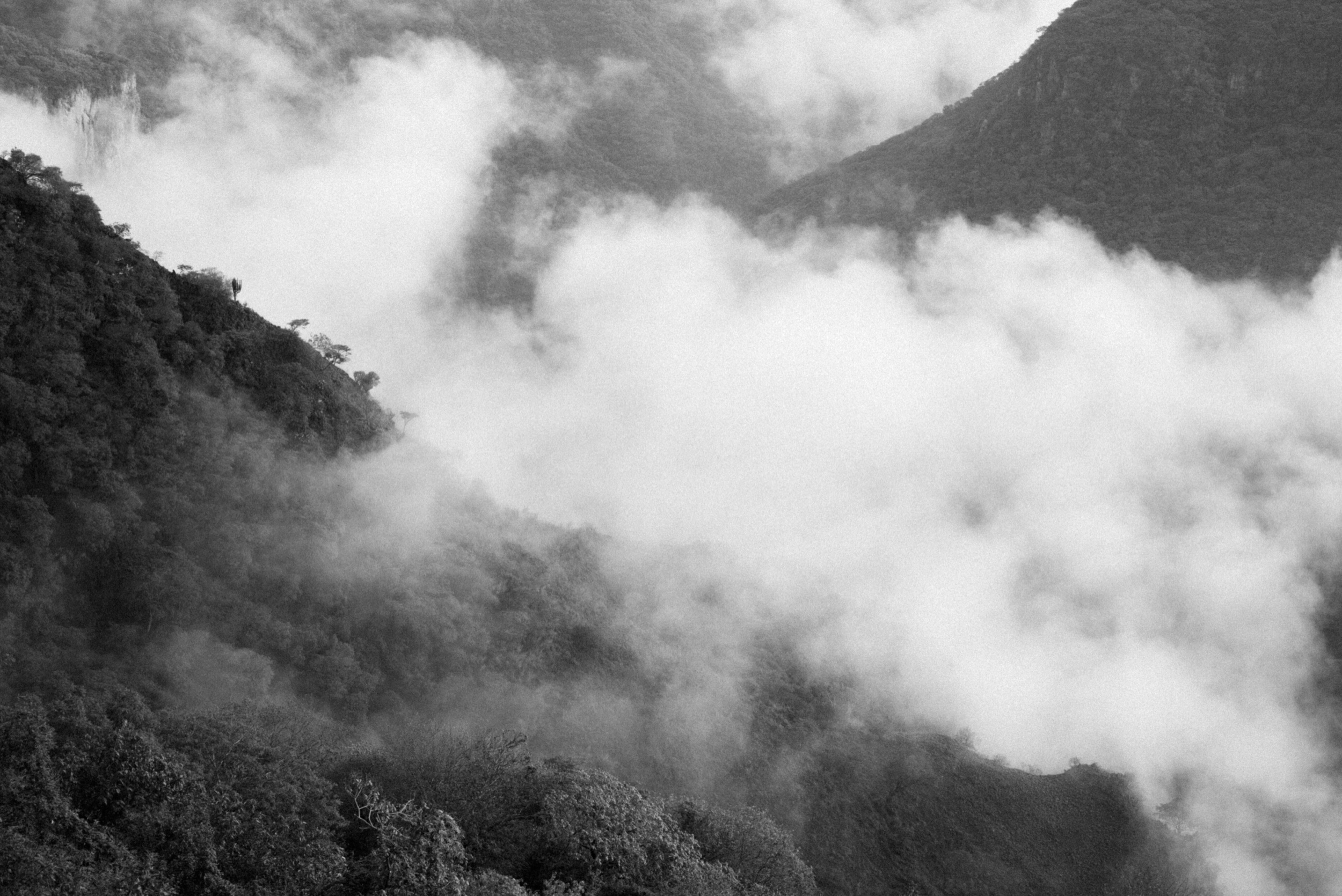 Mind reset.  Leica M(Typ240) + Summicron-M 50mm f/2.