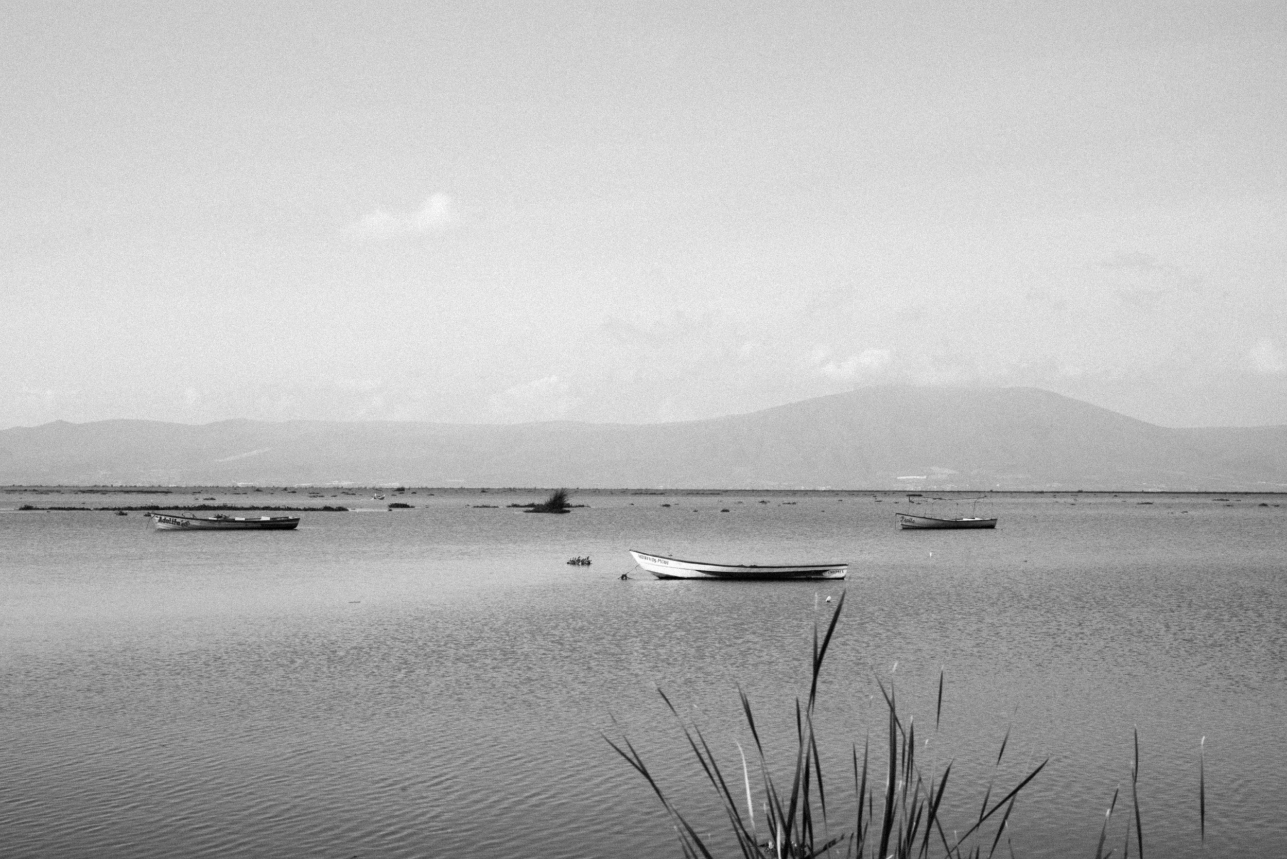 stills.  Leica M(Typ240) + Summicron-M 50mm f/2.
