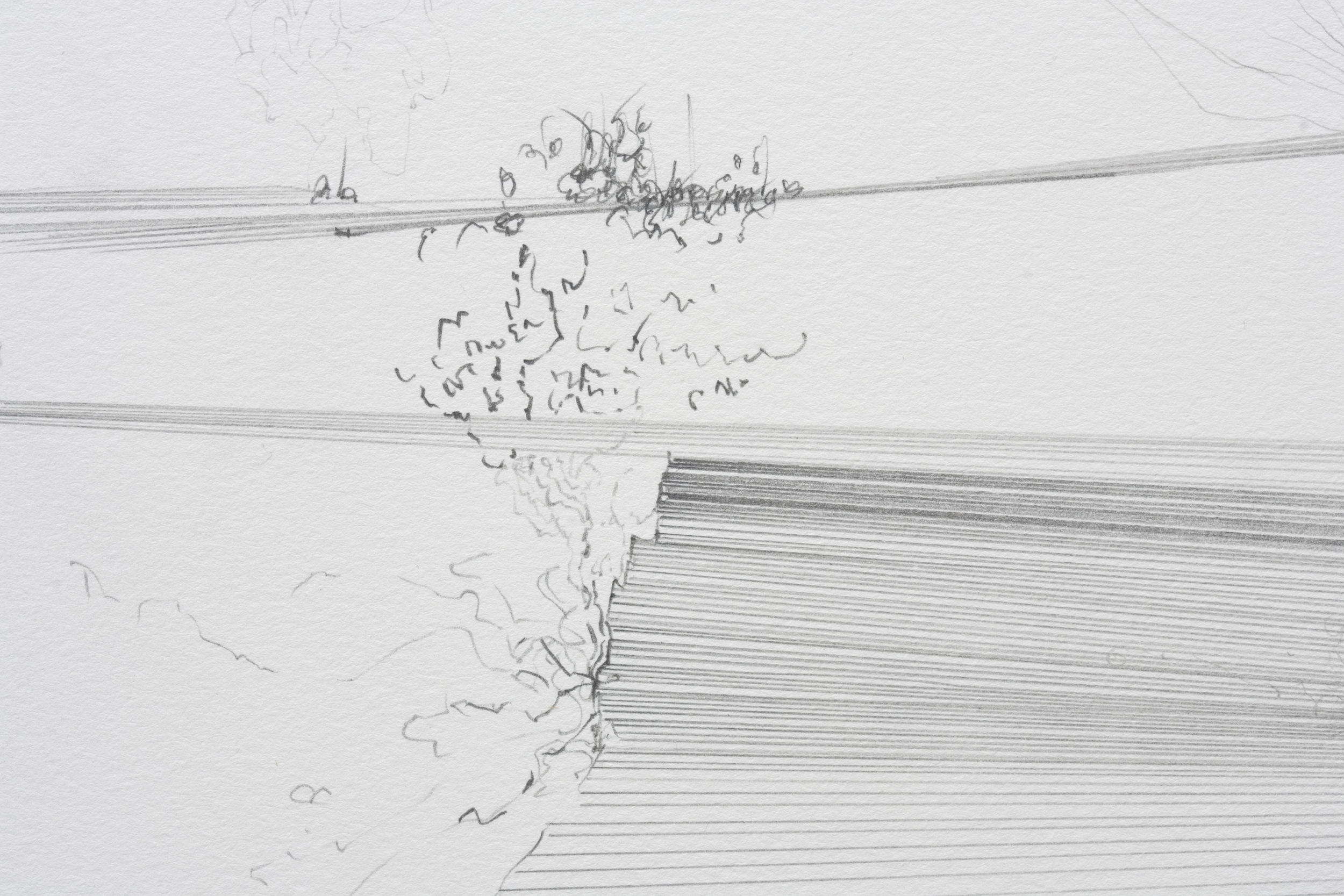 Fissures & Acorns (detail)