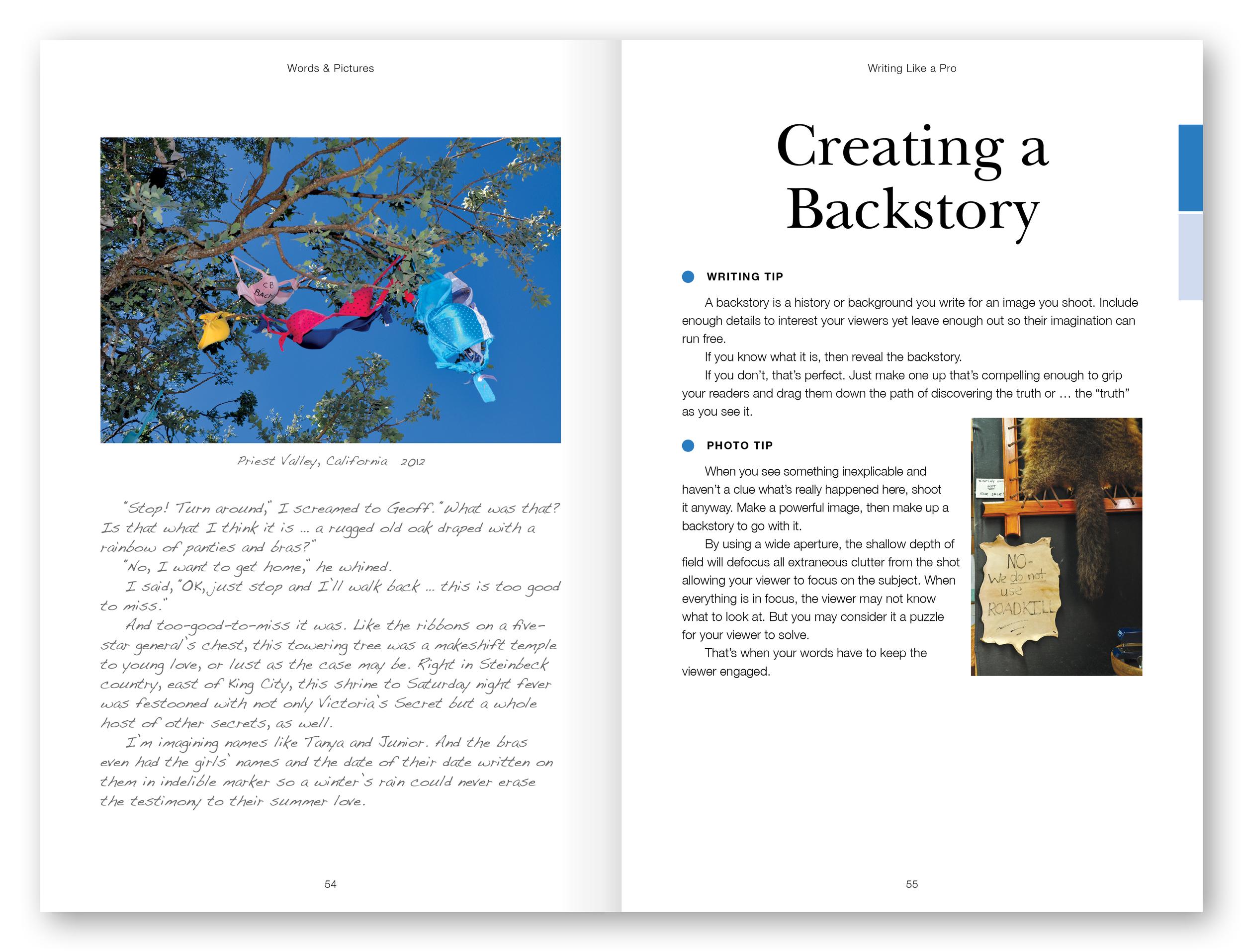Books_Spreads_1120x858_Backstory_080315.jpg