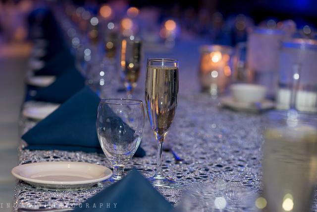 rockford-il-radisson-weddings-49