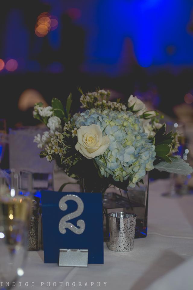 rockford-il-radisson-weddings-5-2