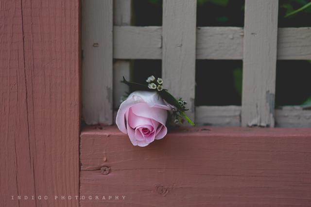 Rockford-Il-wedding-photographer-8