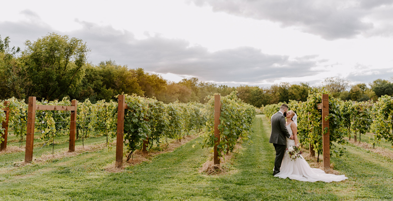 dc-winery-wedding-photos.jpg