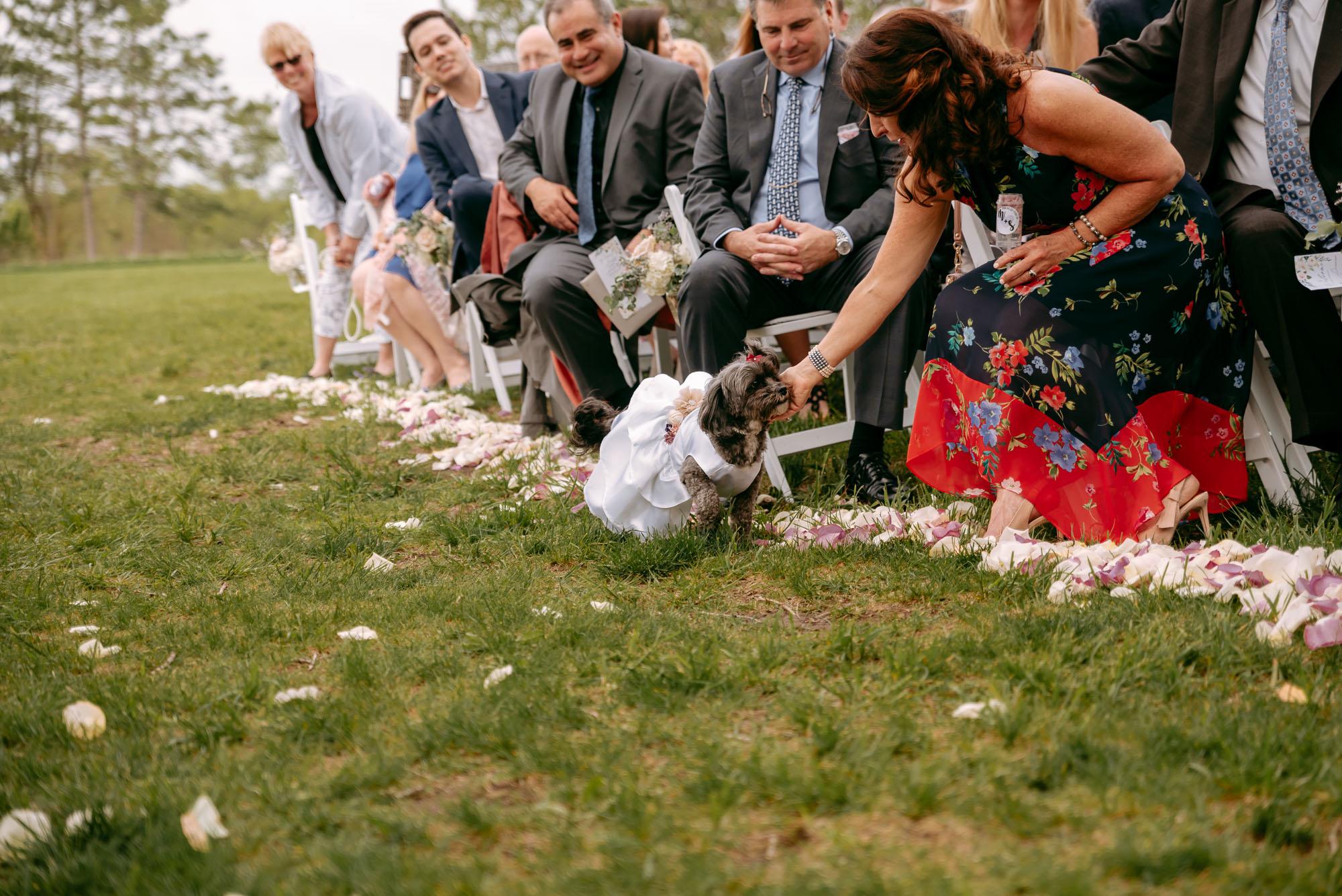 orchard-farms-pavillion-wedding-rockton-IL-wedding-photographers-257.jpg