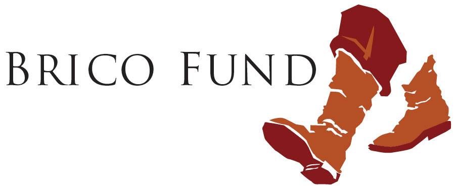 BricoFund-Logo.jpg