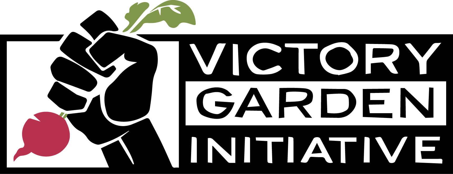 VGI-Logo-Color-Transparent.png