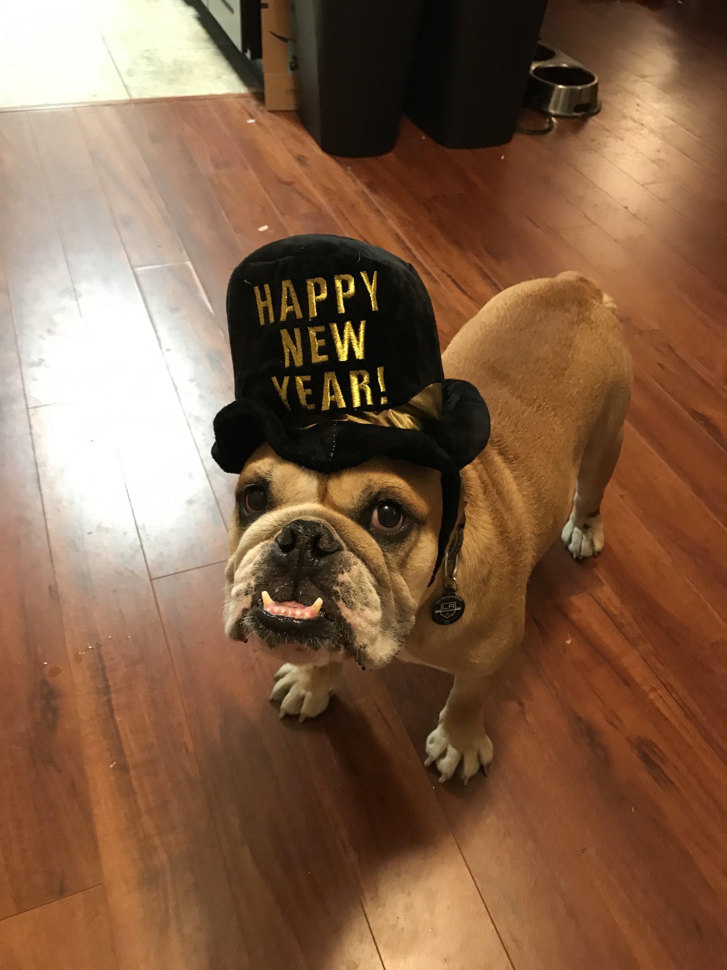 Bogey_New_Year.jpg