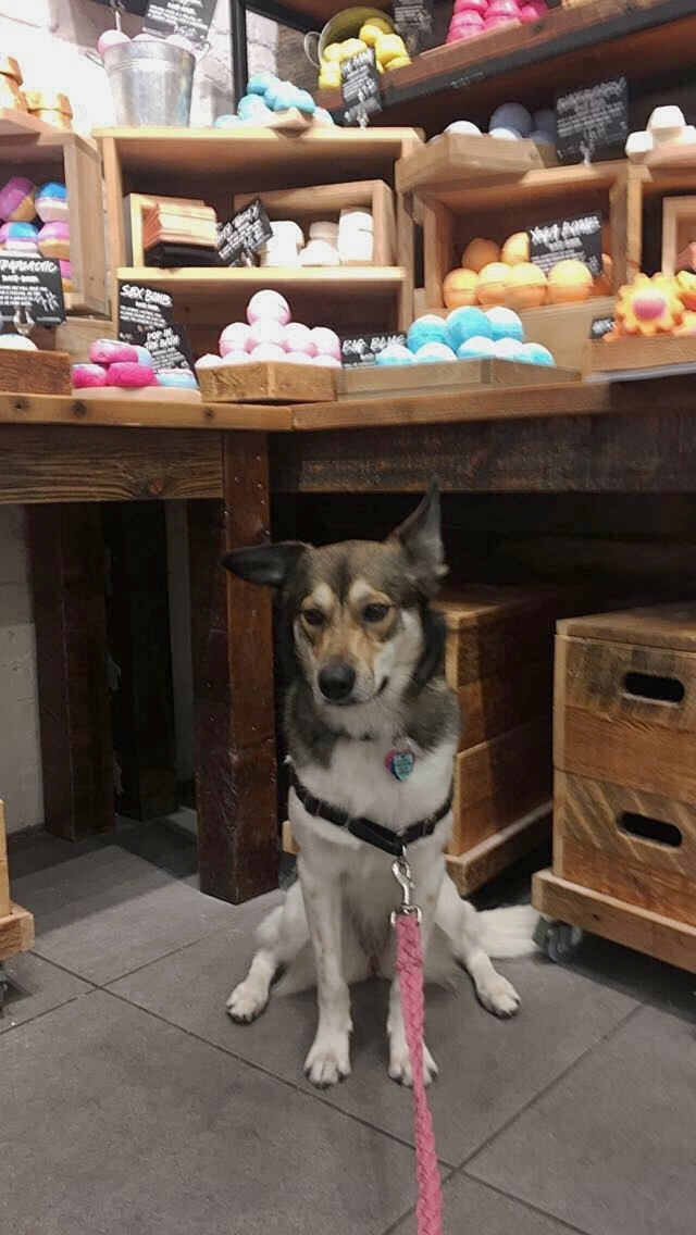 Pissed I wouldn't let her eat the bath bombs at Lush.