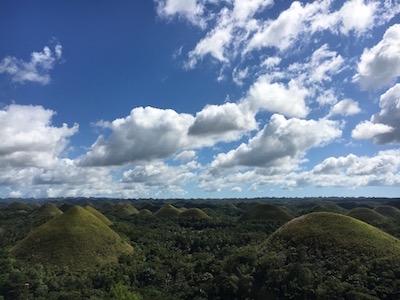 Avocado Smoothie Hills
