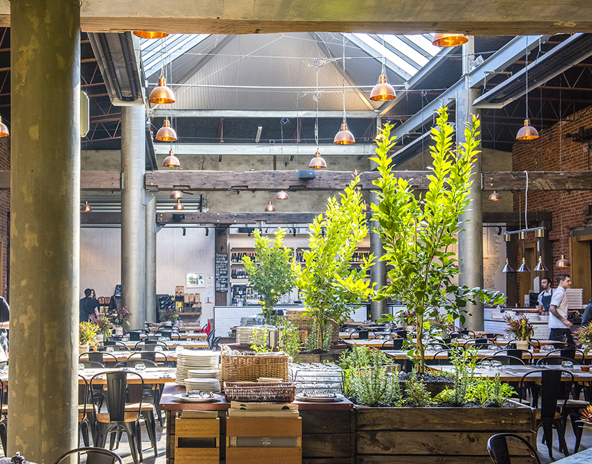The Shed at The Epicurean Red Hill, and its spectacular atrium 'cucina' style restaurant