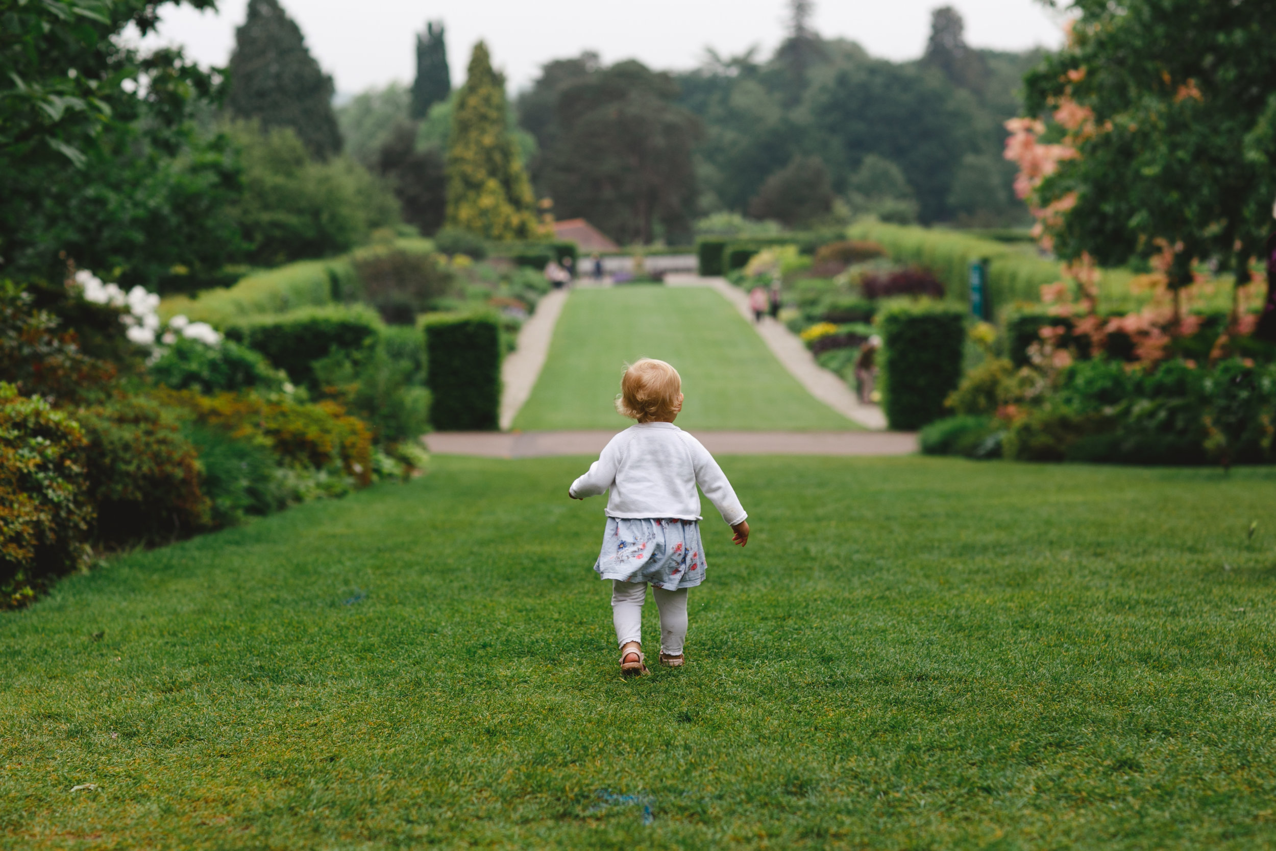 Beautiful gardens to roam in at RHS Wisley