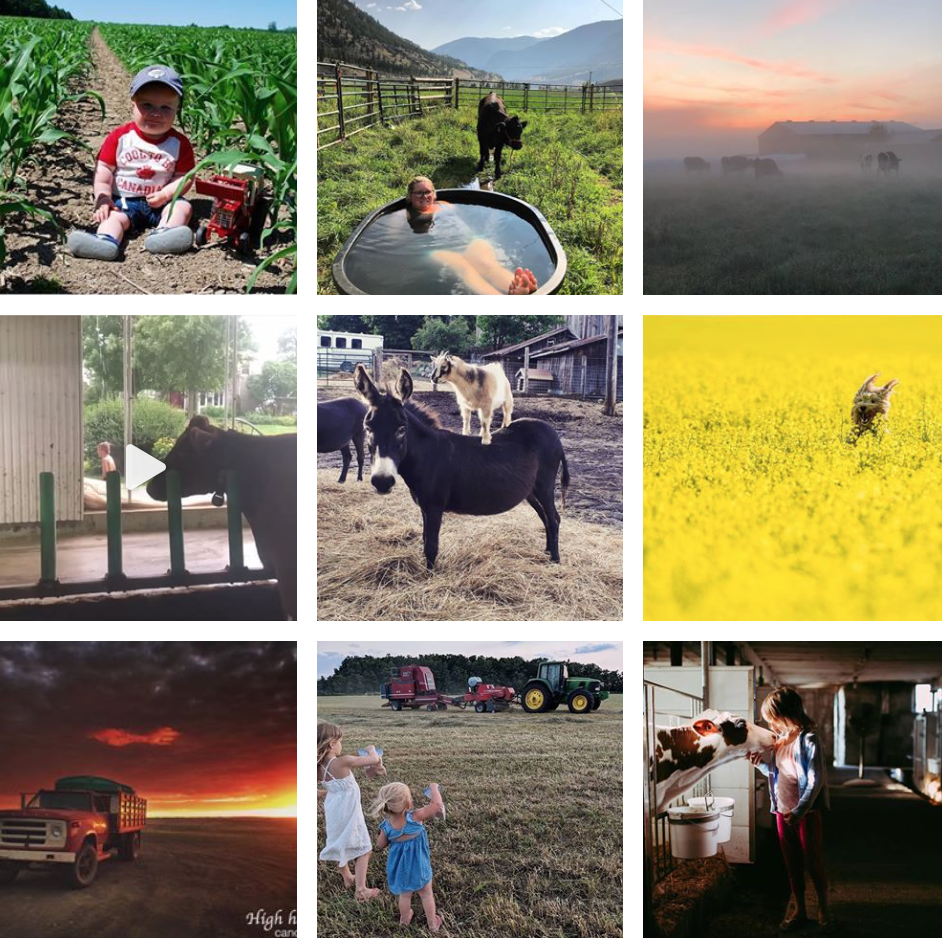 1. Ag More Than Ever - Ag More Than Ever features a collection of Canadian agvocates and provides tips on how to get started on social media, communicate about your agri-based online.