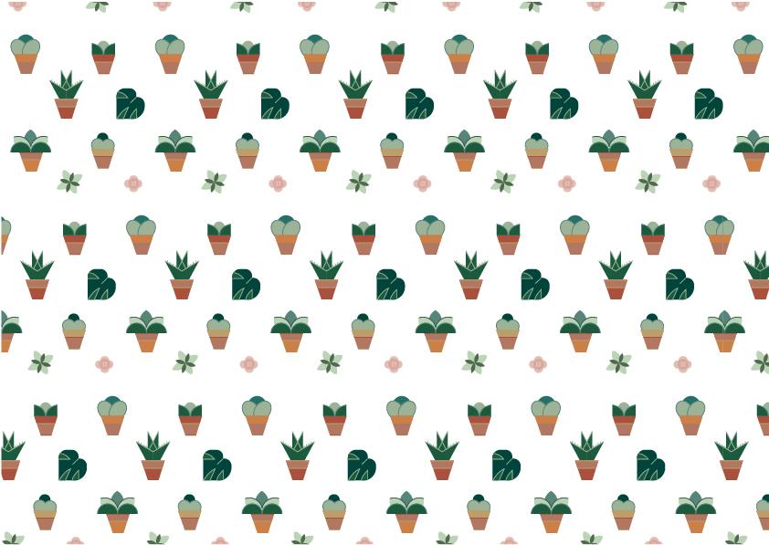 cactus, illustration, suculentas, wedding.jpg