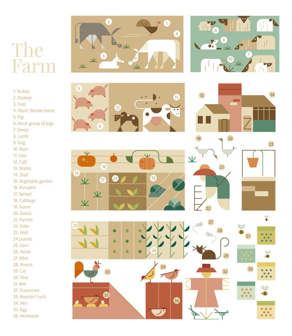 poster, animals, farm, color, vector.jpg