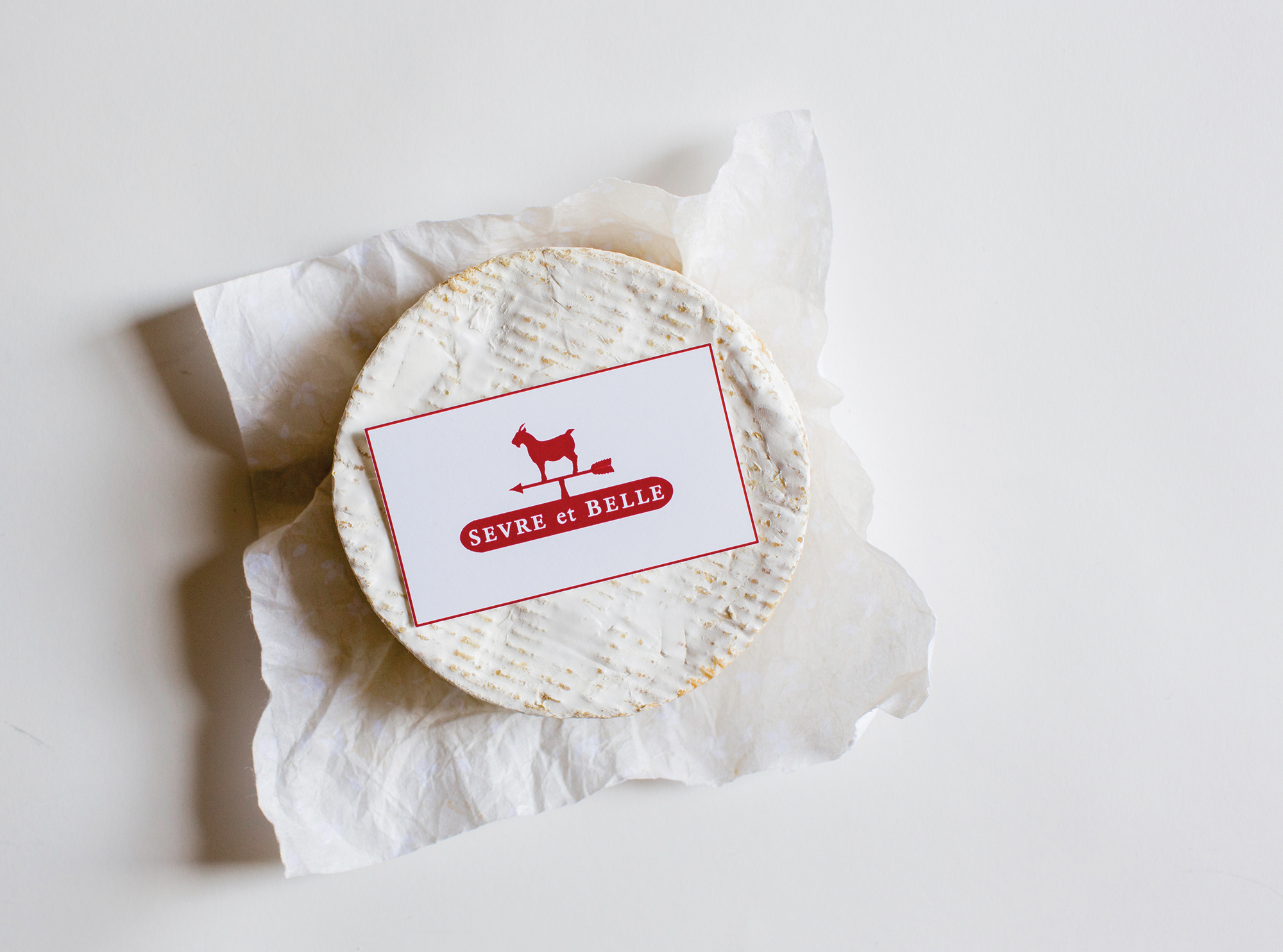 Cheese_BusinessCard_web.jpg