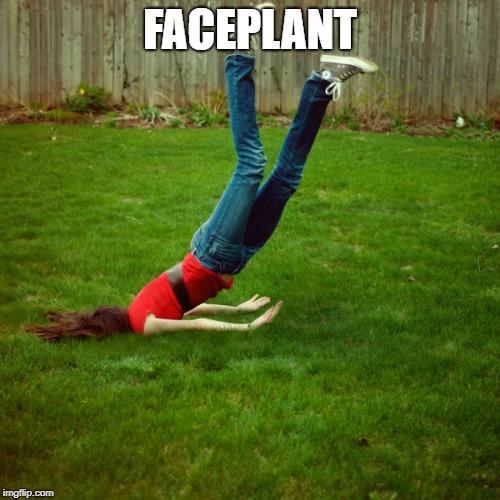 Faceplant.jpg