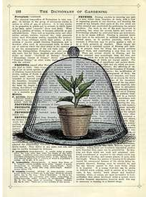 Newspaper Print Art Dome