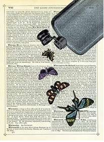Newspaper Print Art Butterflies