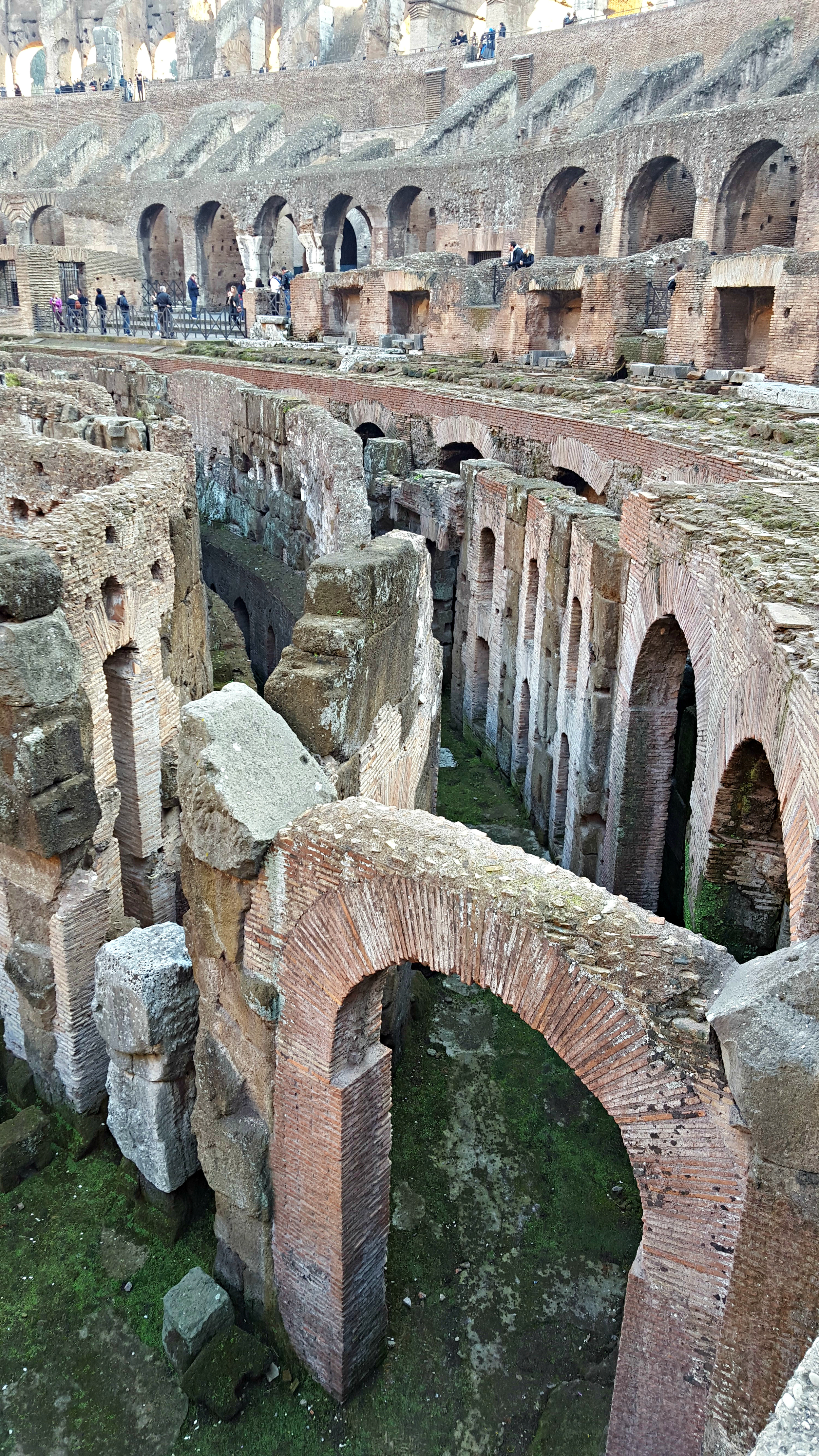 Rows of cages and passages - the Colosseum (2).jpg