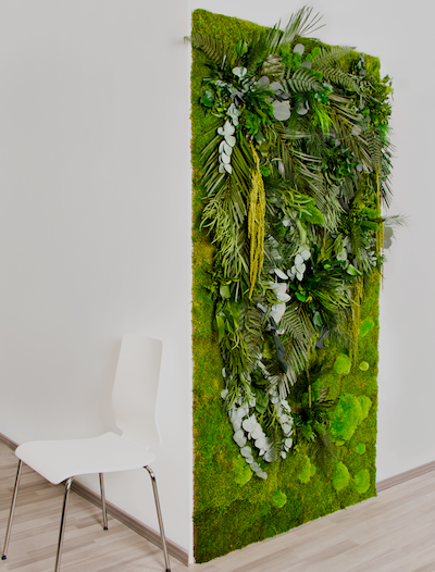 A vertical garden or garden wall using reindeer moss and other plants