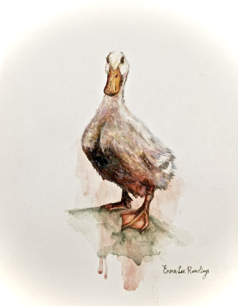 Jemima Paddleduck watercolour painting by Joburg artist Emma-Lee Rawlings