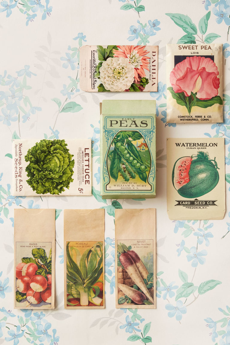 organise your seeds and bulbs for winter gardening
