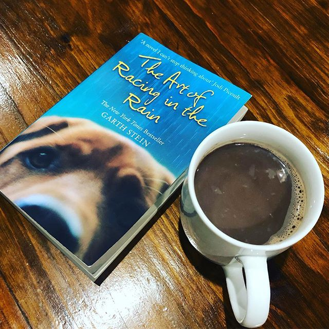 """""""And I wonder:  Have I squandered my dogness?... Have I made a mistake by anticipating my future and shunning my present?"""" - The Art of Racing in the Rain, Garth Stein  #jolabokaflodclub"""
