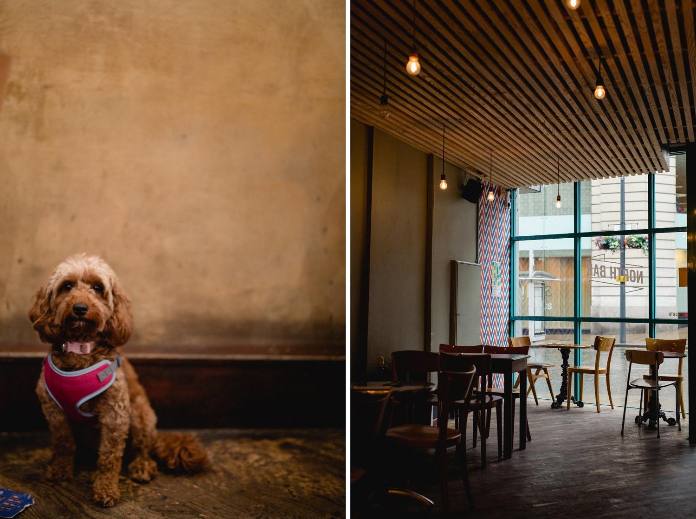 North Bar Leeds Entrance and pub dog
