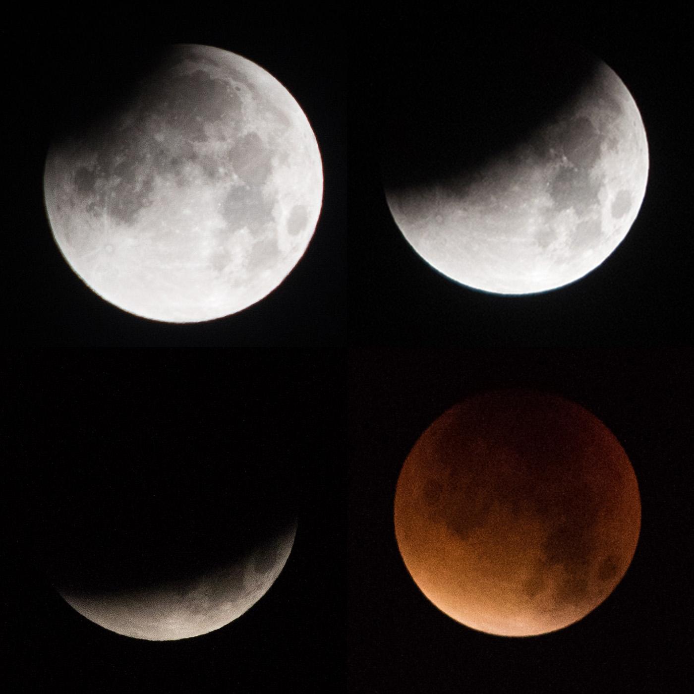 20150928_PollyThomas_SupermoonEclipse_000.jpg