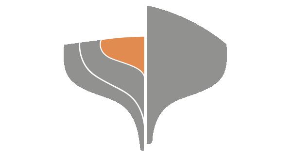 2016-TLS-Icon-AI-.png