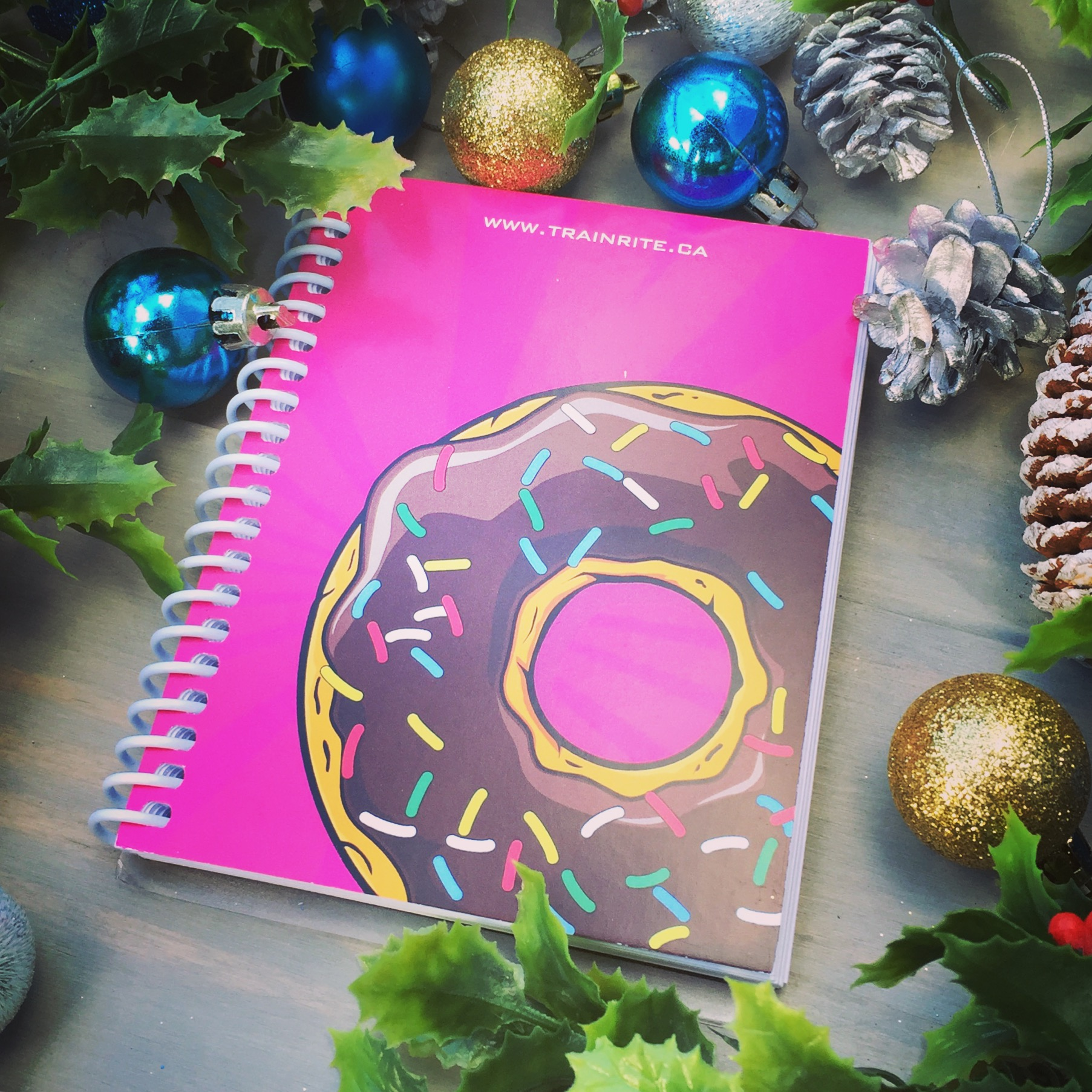 Donut Pink.jpg