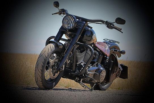 Harley-Davidson Softail (1).jpg
