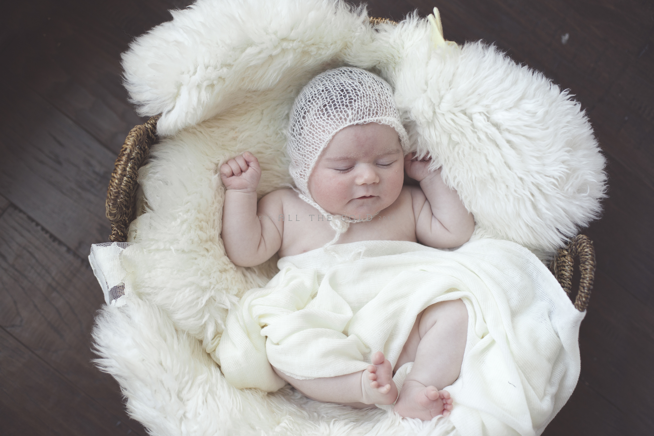 newborn_photographer_the_woodlands_houston_baby_photography
