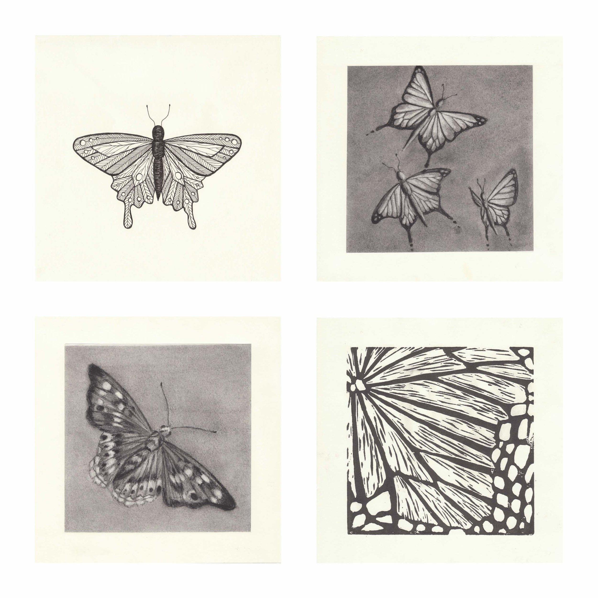 2d_Series_butterfly copy.jpg