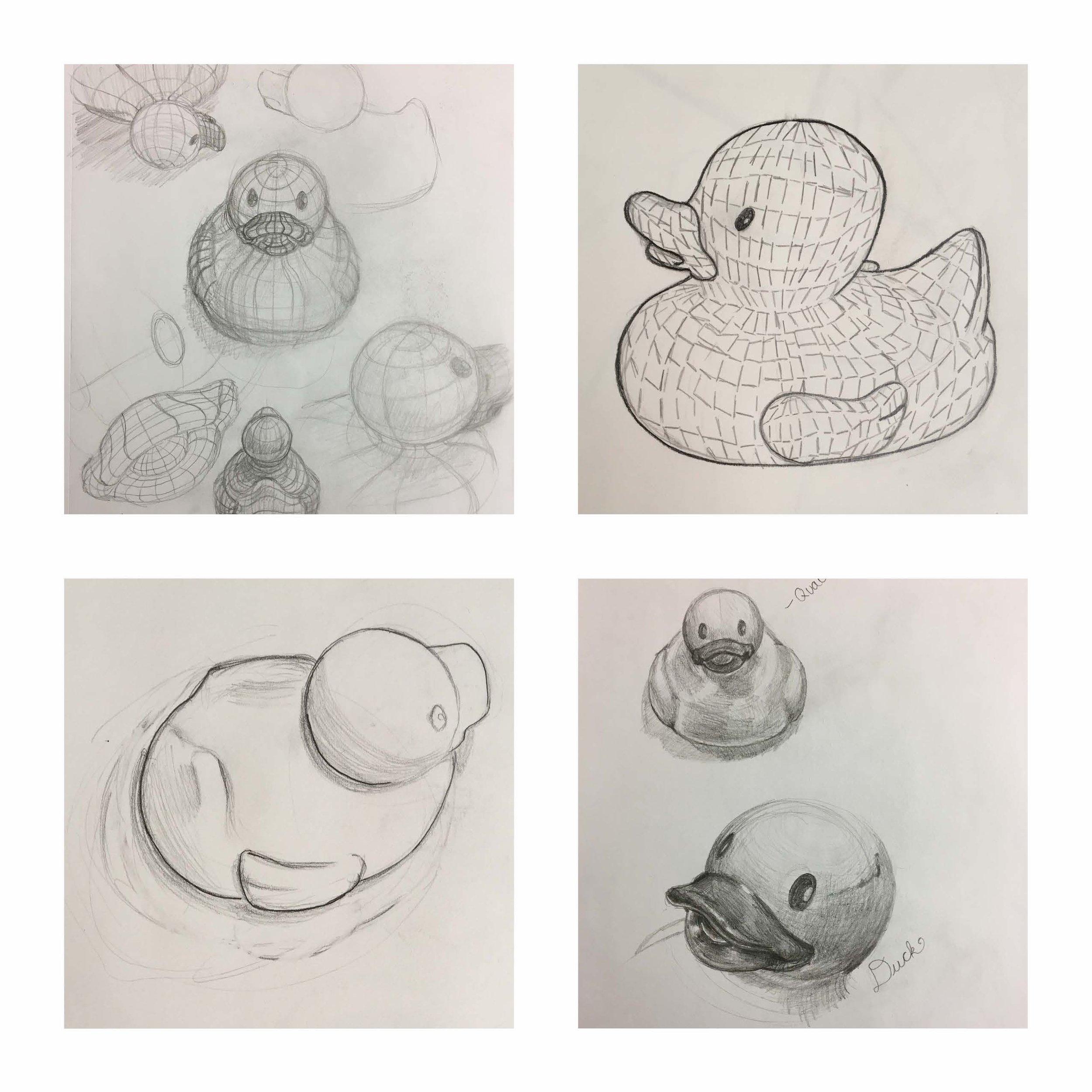 Duck Studies copy.jpg