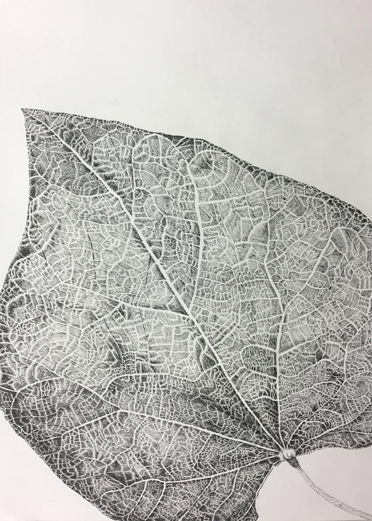Leaf sm.jpeg