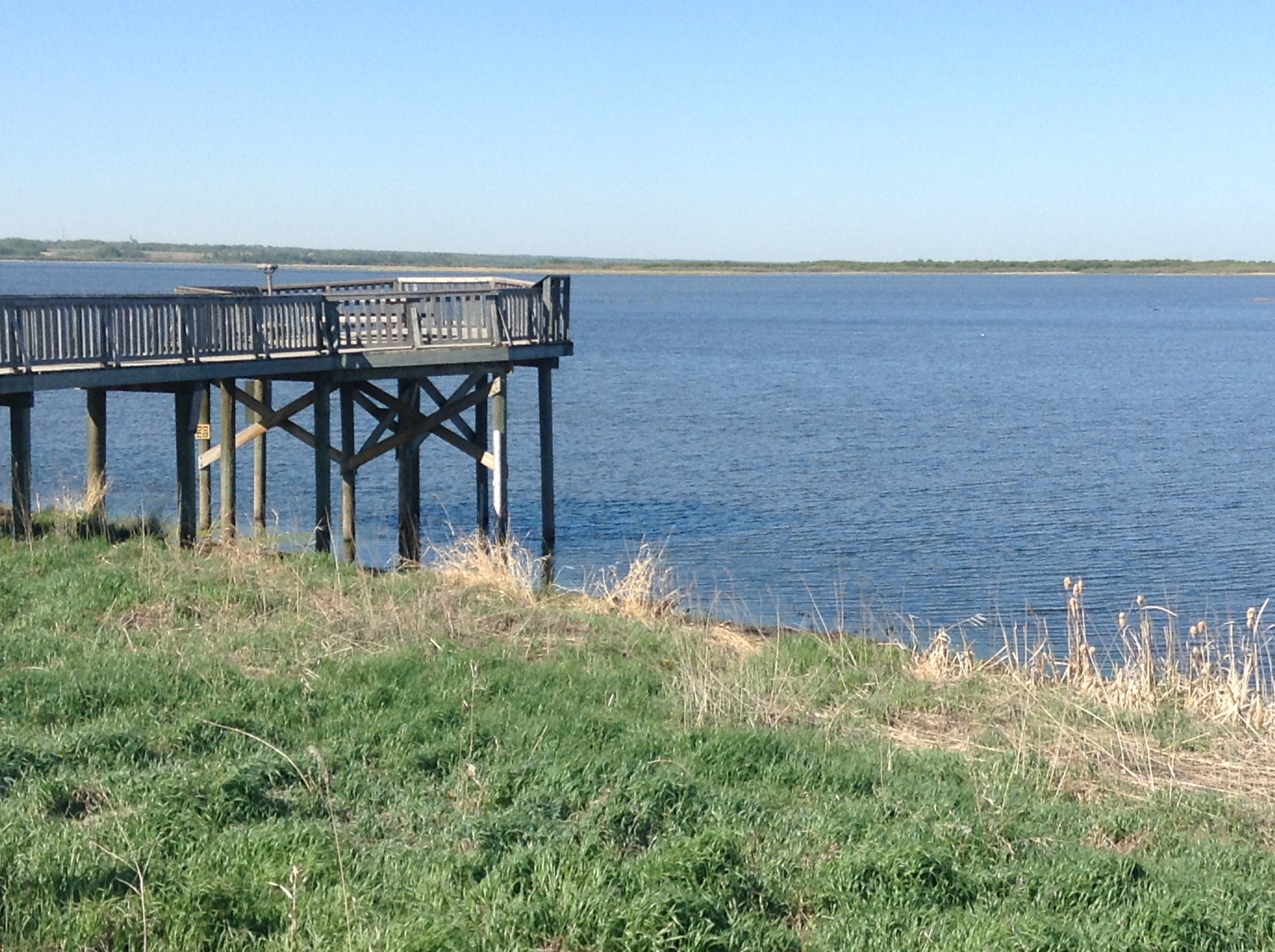 Get a better look at Big Lake from the viewing platform accessible from the Red Willow Trail System!