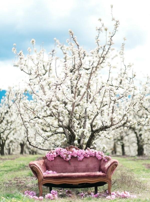 Spring 2016 | blooming blossoms | Organic Album by Darya