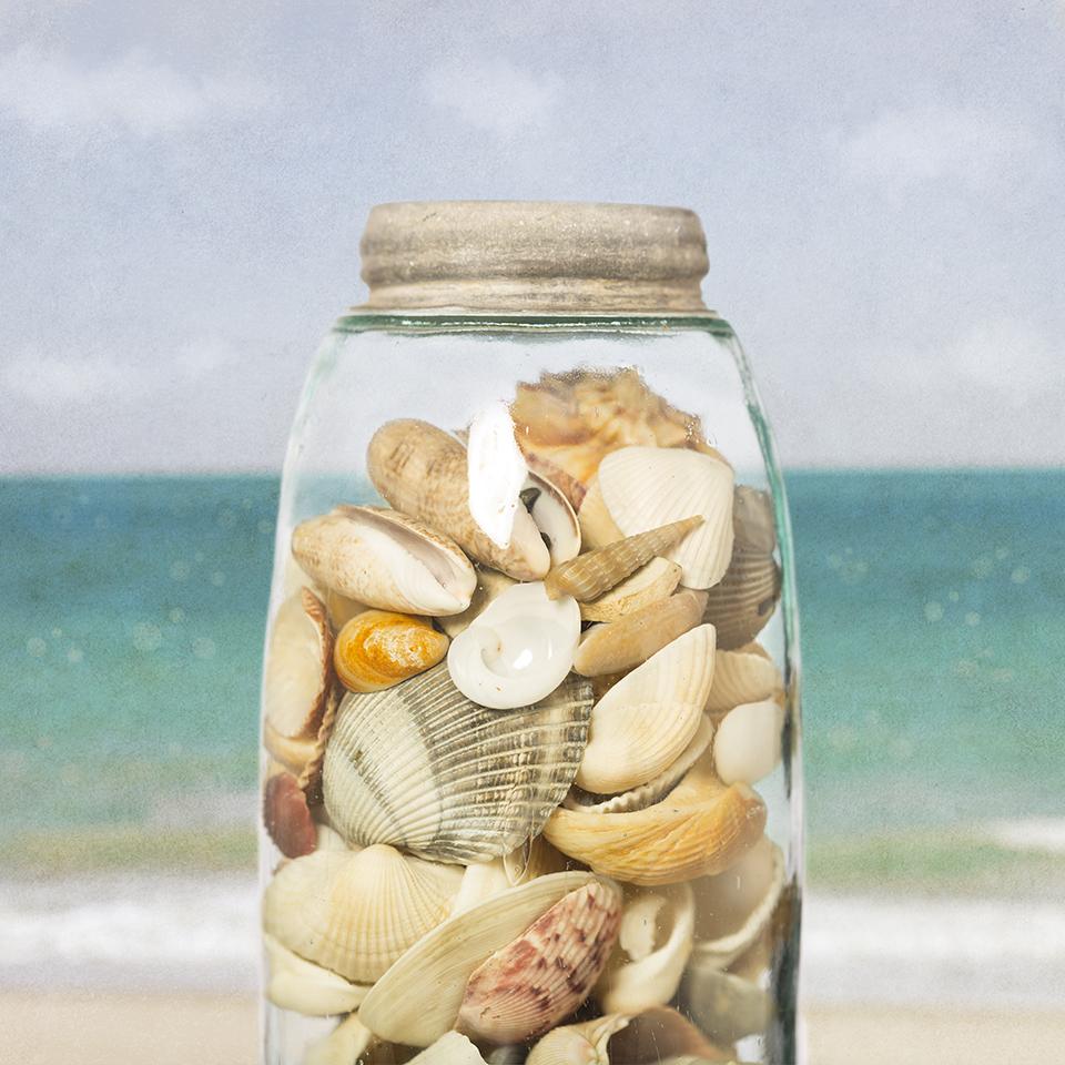 Jar of Shells