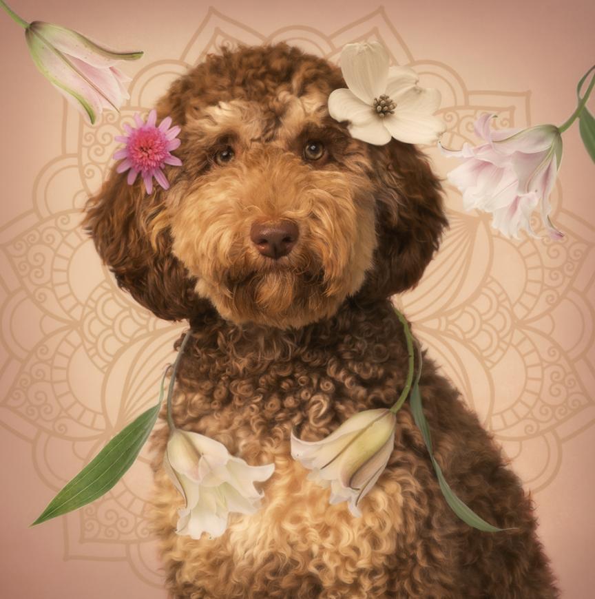 Flower Dog.png